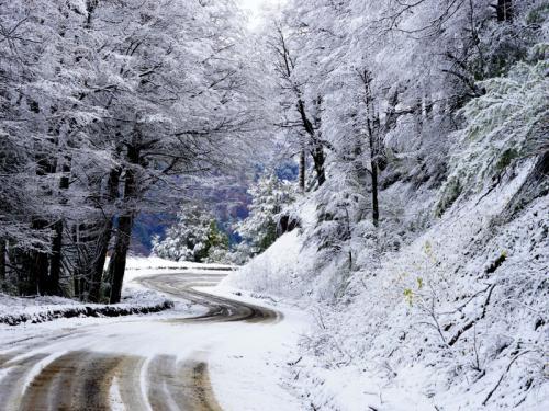 30 stoiber bornscheuer carmen-fcc-camino en la nieve